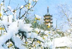 zhenjiang travel guide